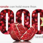Pomegranate fruity fact