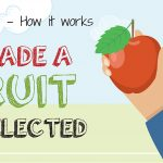 Fruidel - How it works